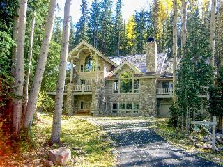 Secluded ski home with jukebox, pool table, and jetted tub, Mountain Village
