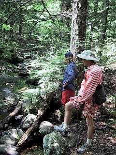 hiking kane mountain minutes away...