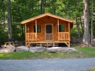adorable little log cabin in the woods, Blakeslee