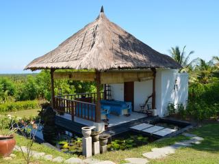 Villa THE JIWA