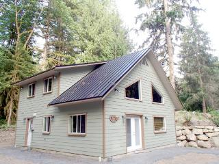02MBH Cabin near Mt. Baker with Hot Tub, A/C, Satellite TV, Glacier