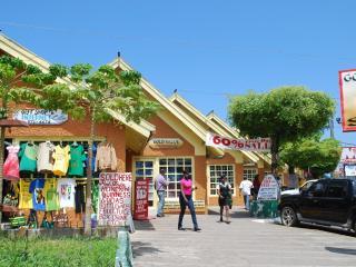 Drax Hall Country Club 24 Hrs Wi/Fi Near Ocho Rios