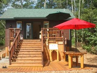 Just Built! Scotty Point Cabin - Secluded & Right on the Coast!