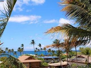2B/2Ba Ocean View Unit, Perfectly Situated 100 Yards from Kamaole Beach I, Kihei