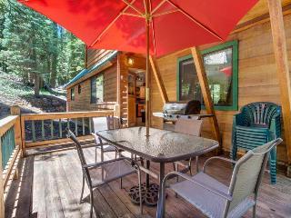 Gorgeous, dog-friendly lodge w/ loft, near beach & skiing!