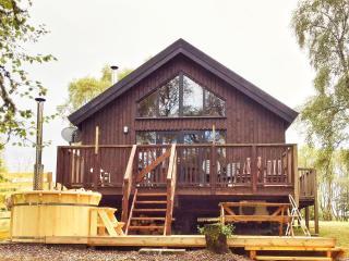 Woodland Log Cabin with Hot Tub at Loch Awe