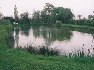 Small private fishing lake in an idilic situation, Mayenne
