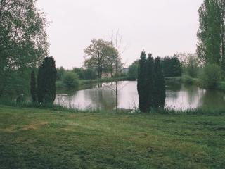 Small private fishing lake in an idilic situation