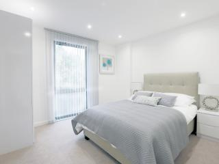 Central London Apartment (Sleeps 8)