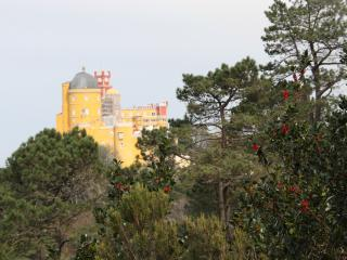 Villa Maria - close to Pena Palace - Sintra