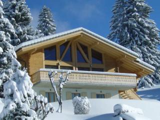 Luxury Modern Swiss Chalet, Villars-sur-Ollon