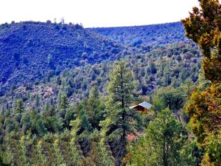 The Eagles Nest Hillside Retreat - Affordable Luxury In The Heart of Seclusion!, Payson