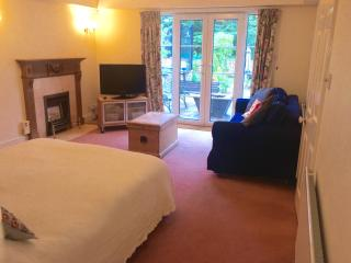 Large open plan bedroom and sitting room