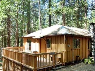 (9s) Pine Cabin, Yosemite National Park