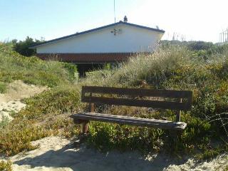 Villa on sand Dunes near Rome, Lido dei Pini