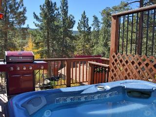Tree Top Retreat: Spa! Fireplace! BBQ! Internet!, Big Bear Lake