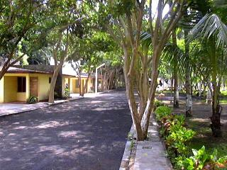 Apartments & Villas for Rent