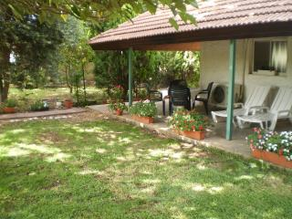 At Our Yard - Vacation Apartment in upper Galilee, Yesod Hamaala