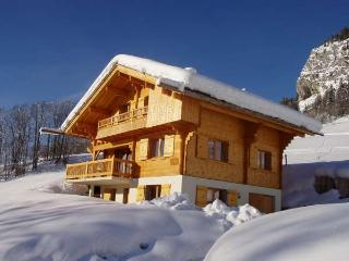 BERRIER 7 rooms 12 persons 073/011, Le Grand-Bornand