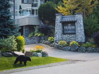 Luxury end unit, big hot tub in lodge,free parking/internet, Whistler