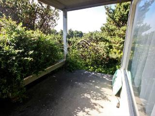 MCKINNON'S~Ocean front, sensational views with large expansive back yard