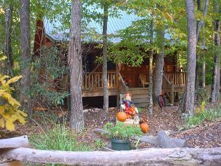 CHARMING CABIN ON MOUNTAIN STREAM WITH HOT TUB, GAME TABLE, GAS F/P & WIFI!
