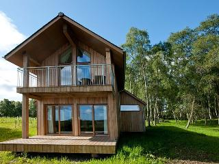 State of the art crafted Eco lodges - Silver Birch & Scots Pine Lodge, Dalcross