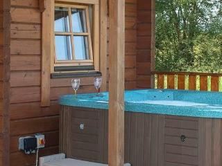 Luxury Lomond Lodge 3 Plus - 379390 - Luxury Lomond Lodge 3 - Gorgeous single storey lodge with panoramic views & hot tub - Loch Lomond, Scotland, Gartmore