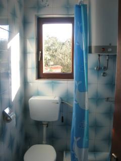 A2(4+1): bathroom with toilet