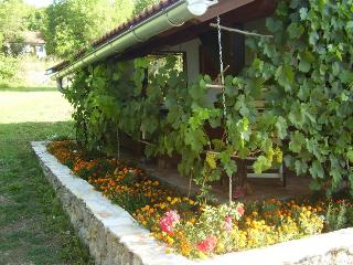 35243 H(4+2) - Gacka dolina, Zaluznica