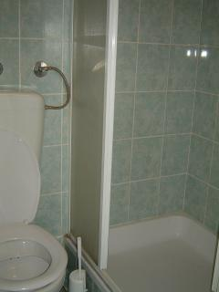 A1 Zeleni(5): bathroom with toilet