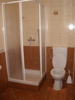 A1(2+2) smeđi: bathroom with toilet