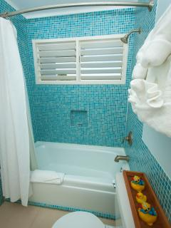 2-Carnival Suite shower/tub
