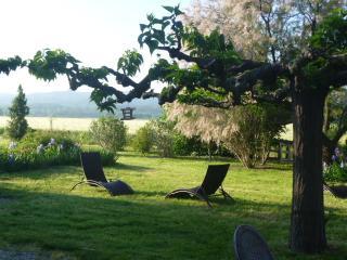 Relax near Arles, Avignon, Saint Remy, Saint Etienne du Gres