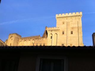 Vue sur le Palais Des Papes, spacieux et lumineux, Avignon