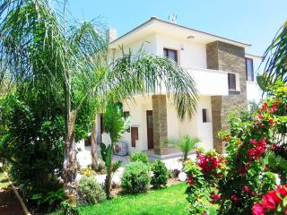 Secluded, modern, luxury villa,pool,gym,jacuzzi, Ayia Napa