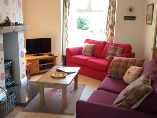 A lovely warm cosy front room with HD Freeview + DVD Player