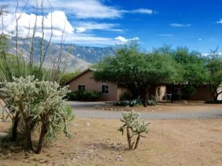 Catalina Desert Retreat, Spectacular Mt.Views, pool/spa on 2 private acres