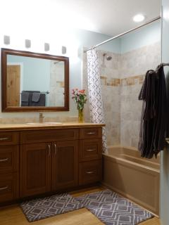 Master Bathroom, adjoins master bedroom..