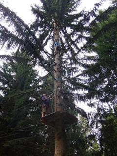 Tree adventure rope climbing