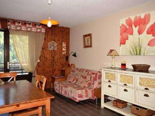 BEAUREGARD 4 Studio + small bedroom 4 persons, Le Grand-Bornand