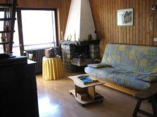 GEMEAUX 2 4 rooms 8 persons 061/052, Le Grand-Bornand