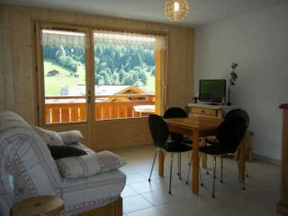 GRANDES ALPES B 2 rooms + sleeping corner 4 persons, Le Grand-Bornand