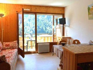 PLEIN SUD A Studio + sleeping corner 3 persons 408/236, Le Grand-Bornand