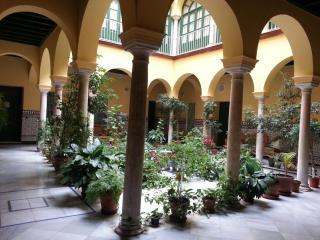 LUJOSO APARTAMENTO EN CASA PALACIO EN EL CENTRO DE, Sevilla