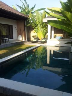 8 x 3 m pool and lush tropical garden area
