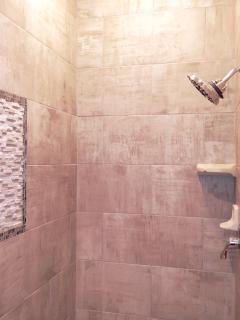 Customized brand new master shower