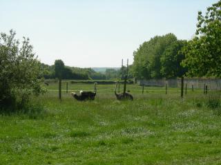 Gîte de la ferme du Couvent, Beaumont-sur-Oise