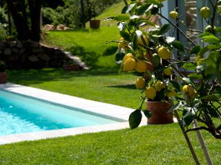 Orangerie, stunning villa with pool near Florence, Bagno a Ripoli