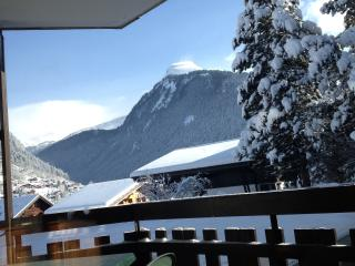 Le Pleney Studio Morzine